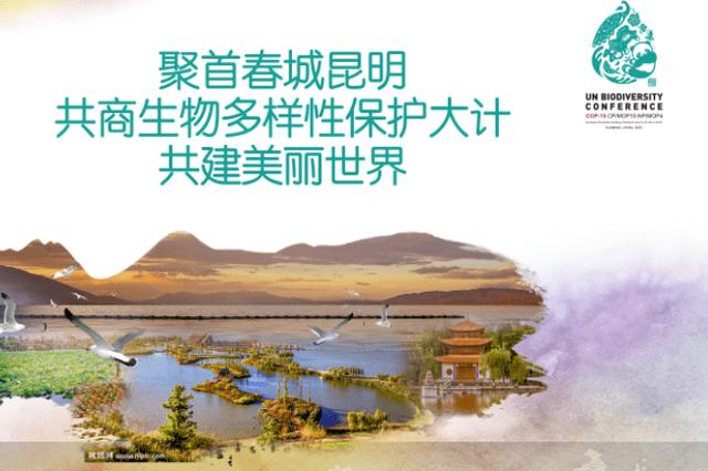 """【COP15·云南】专家:""""昆明宣言""""为云南生物多样性保护提供"""