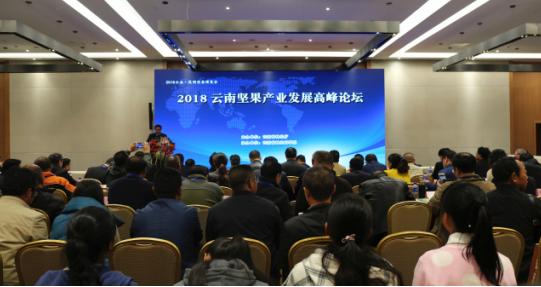 (2018云南坚果产业发展高峰论坛)