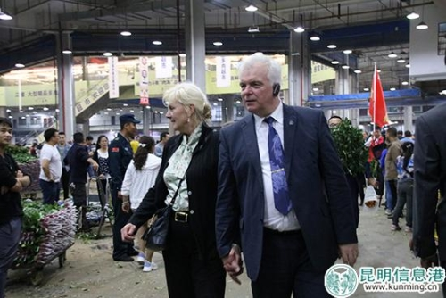 外国驻华使节团参观斗南鲜花交易市场。记者甘凌菲/摄