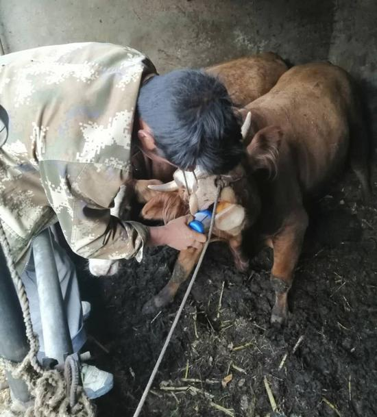 防检员入户开展动物防疫工作