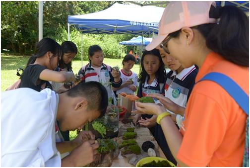 学生参观体验雨林缸