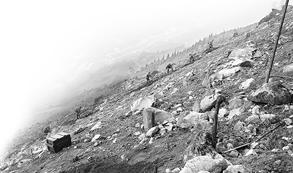 扫雷官兵在265号界碑雷场作业 本版图片除署名外均由部队提供