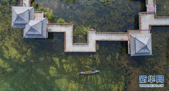 8月26日,工作人员在抚仙湖边清理水草。