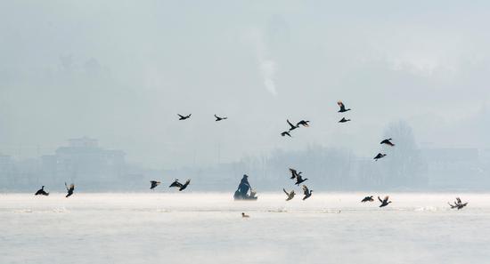 泛舟剑湖,人与候鸟和谐共处。,苏金泉摄影。