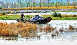 阳宗海开湖首日,渔民满载而归。