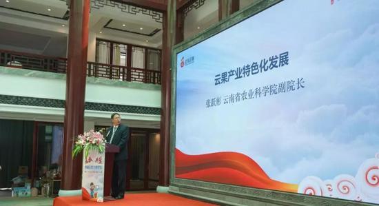 云南省农业科学院副院长张跃彬分享