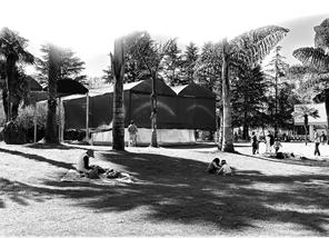 西华公园,有人坐在草坪上。