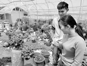云南的各种特色农产品畅销全国 记者 刘文波 摄