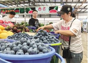 改造后的凤麓市场划分了专门的水果区