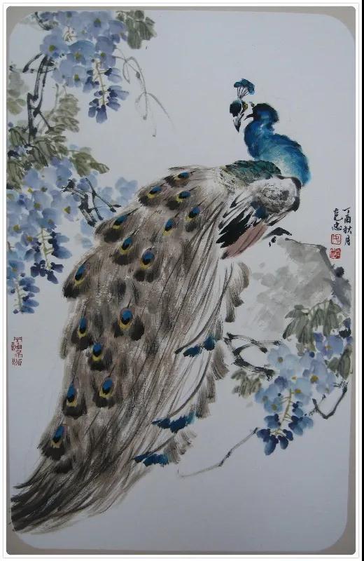 △如克忠的中国画作品《孔雀图》