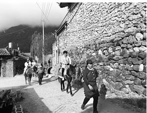 丽江村民的幸福生活:牵马旅拍看雪山 每年收入上万元