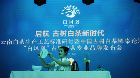 """现场上,茶艺师向观众展示新产品""""凤凰一号""""古树白茶"""