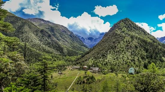 云南白马雪山国家级自然保护区原始森林。(人民网 曾智慧摄)