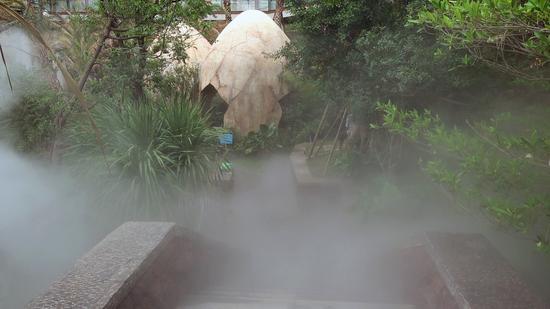 恐龙蛋中泡温泉