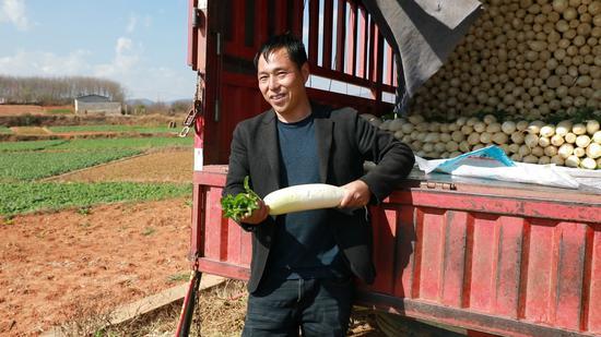 蔬菜经销商收购萝卜