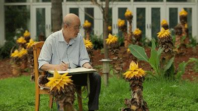 曾孝濂7月14日在昆明植物园写生。新华每日电讯记者周磊摄