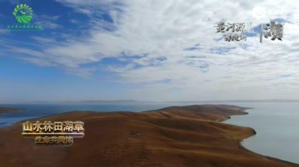 [COP15全球短视频征集作品展示]生命之巅