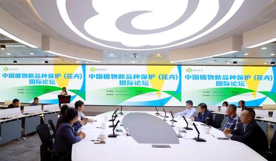 中国植物新品种保护(花卉)国际论坛现场。