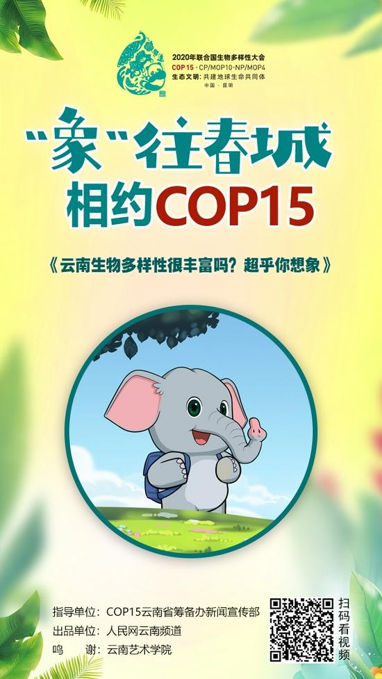 """""""'象'往春城 相约COP15""""系列动漫《云南生物多样性很丰富吗?超乎你想象》海报"""