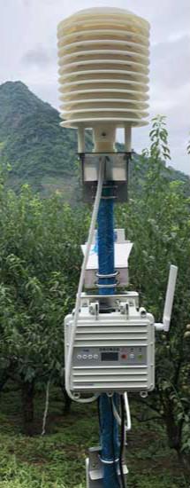 安装在李子园里面的农业综合检测设备