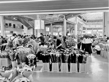 国庆·花市丨 昆明鲜花俏销 价格上涨