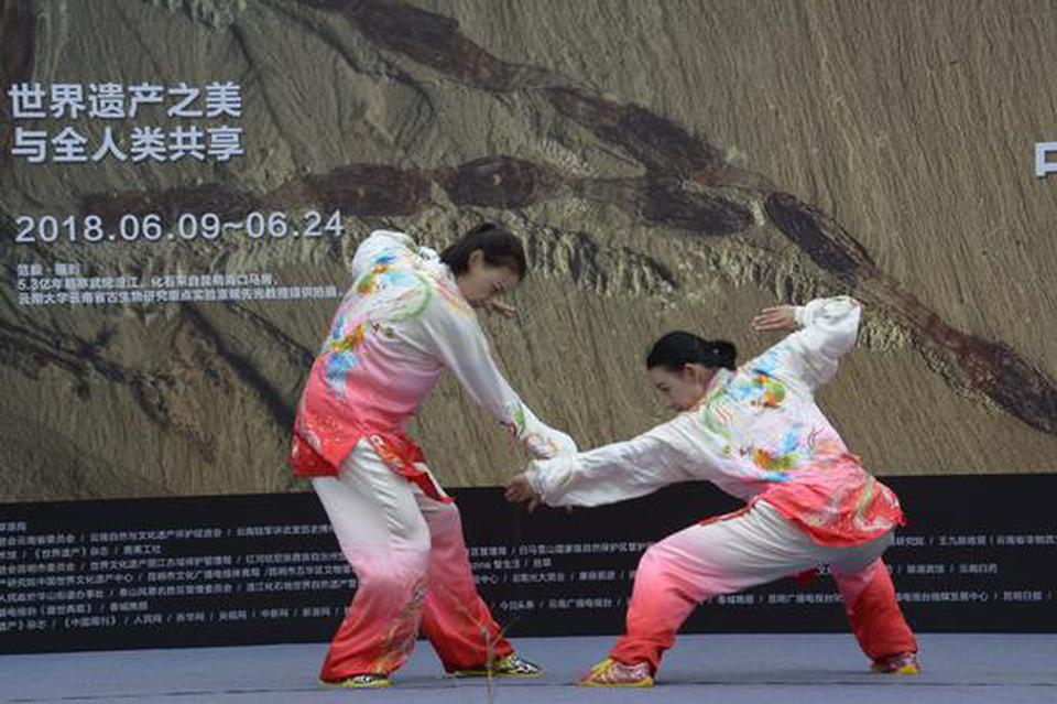 中国文化和自然遗产日开幕 世界遗产地首次在昆联展