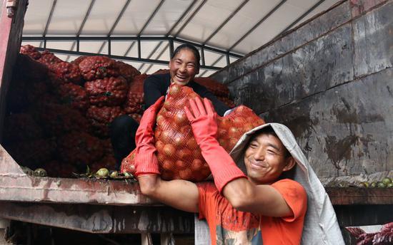 工人们正在卸车 摄影/杨桂清