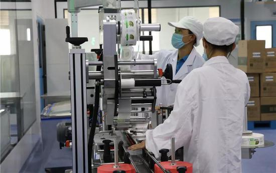 云南品斛堂生物科技有限公司正在生产石斛产品