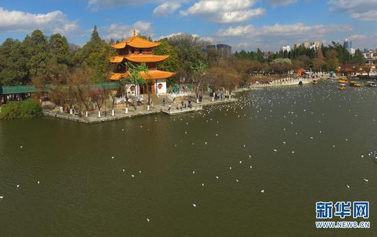 图为滇池湖畔的大观楼公园。