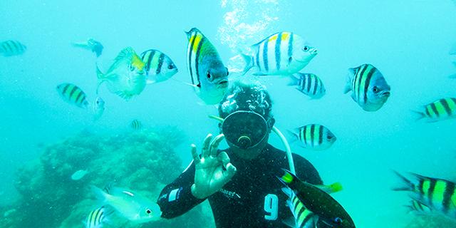 一起去深海探险
