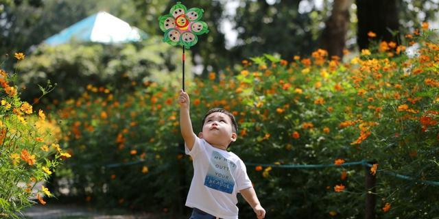 植物园温馨一幕
