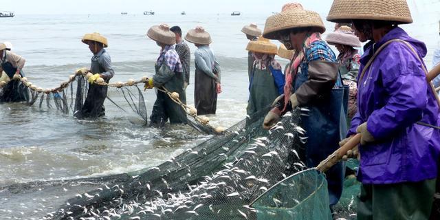 南海渔民捕鱼归来
