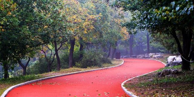 植物园铺上了健康跑道