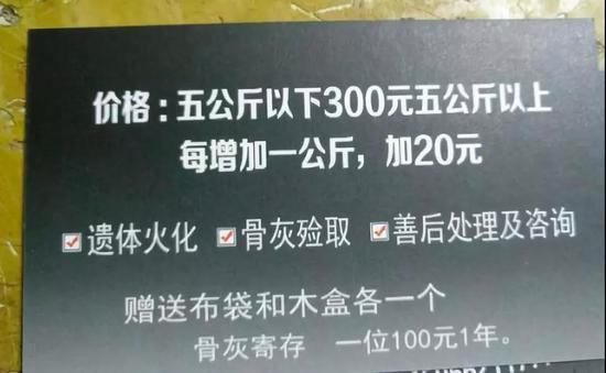 水疗针灸美容 外媒吐槽中国人正在宠物身上挥金如土