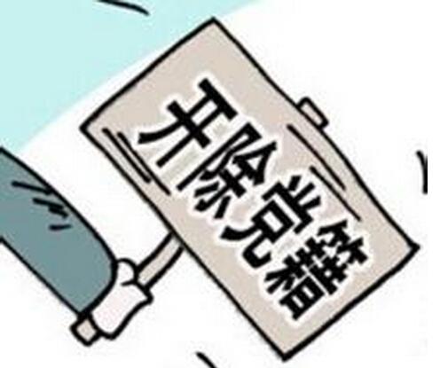 常山人大常委会原副主任被开除党籍 用公款买年货