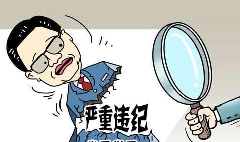 杭州临安市委办副主任蒋晓明接受调查 涉嫌严重违纪
