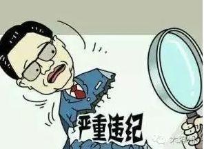 宁波市人大常委会原副主任苏利冕接受审查(简历)