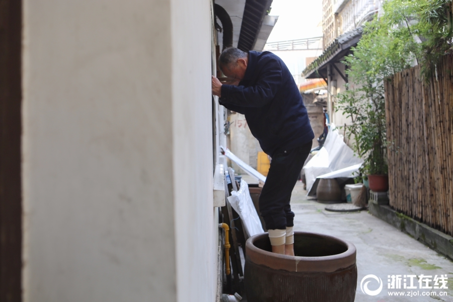 杭州家家户户开始腌制冬腌菜 脚踩出来的老底子味道