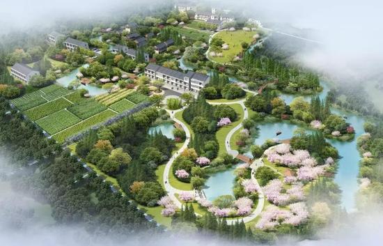 张李村南浦湿地公园鸟瞰图