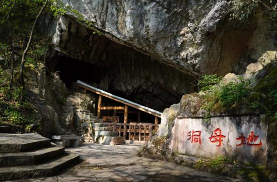 一位106岁老人的遗愿 牵动杭州贵阳两地的专家学者