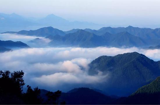 2002年 大盘山被命名为国家级自然保护区
