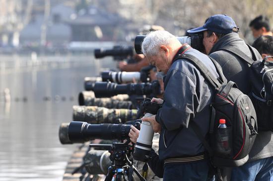 图为:一位老年摄影爱好者在查看相机。王刚 摄