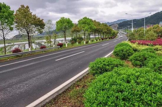 """研究院调研三门海滨旅游公路开发和设计,计划结合""""四好农村路""""建设图片"""