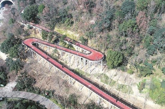 图为:台州路桥中央山绿道。王斌 摄