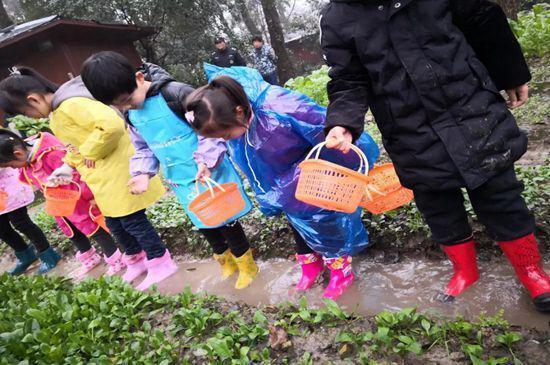 一块菜地架起爱的桥梁 杭州一群小朋友采摘爱的礼物