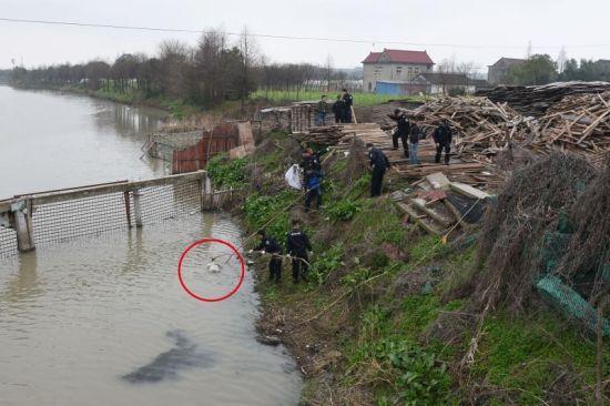 河道内发现一具女尸 嘉兴公安 供图
