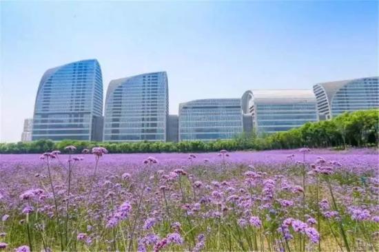 这个地方就在杭州钱江世纪城国博旁