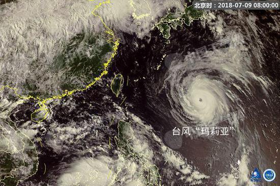 台风要来了!夏日的宁静将一点点被打破。