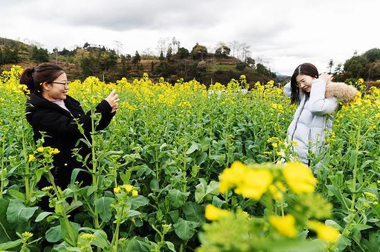 游客在油菜花田中拍照 永嘉宣传部供图