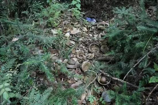图为:竹家岭窑址废品堆积 黄岩区委宣传部提供